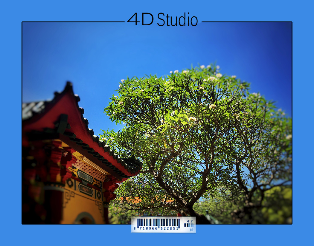 Eden Man 攝影師最新紀錄 - REAL TIPs for photography shooting. inside this content.... please take a look(2019-8-17,活動攝影)